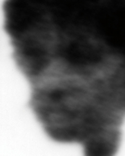 http://www.oliverleu.com/files/gimgs/th-12_SL-091-53_1_b.jpg
